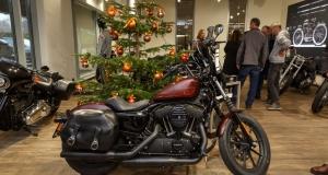 Harley-6667