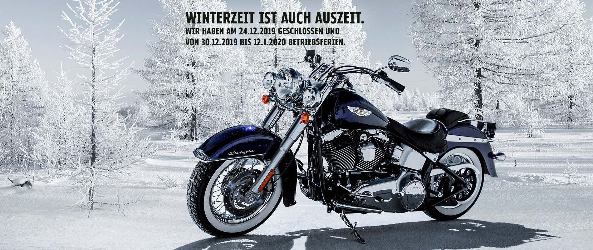 HD_Regensburg_Billboard_Winter2019