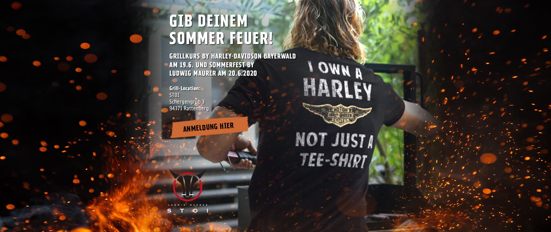 HD_RegSchwarz_Billboards_Grillen_2019_Bayerwald_V02