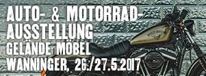 HD_Schwarzach_Terminbilder2017_Ausstellung2